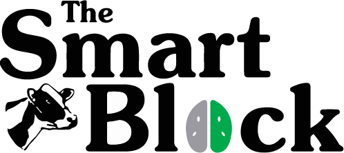 The Smart Block